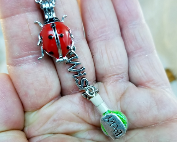Ladybug Wearable Wish