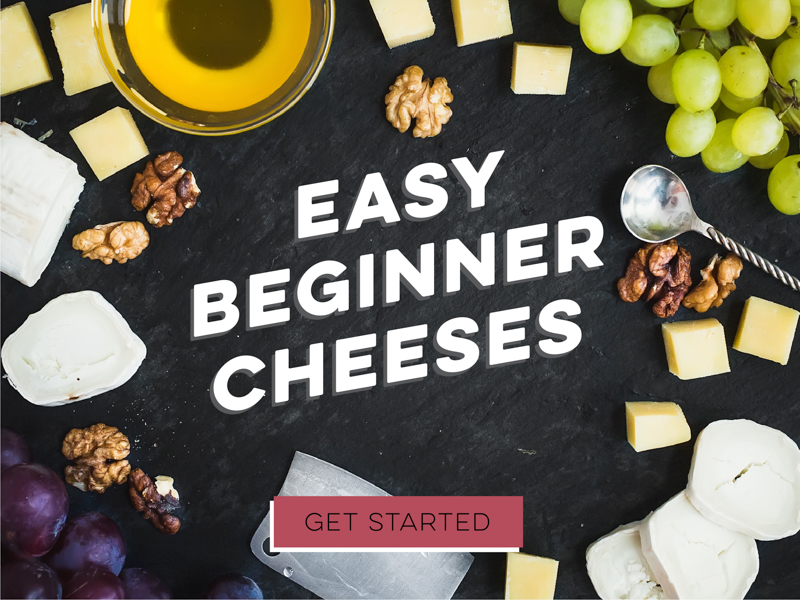 Easy Beginner Cheeses