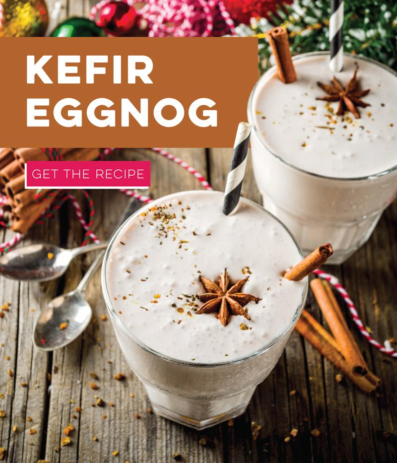 Kefir Eggnog
