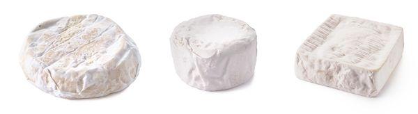 イタリアチーズ通信講座について