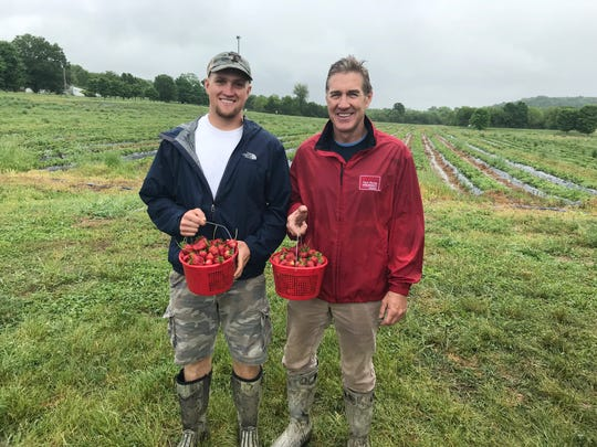 Farmers around Nashville have strawberries ready to be picked