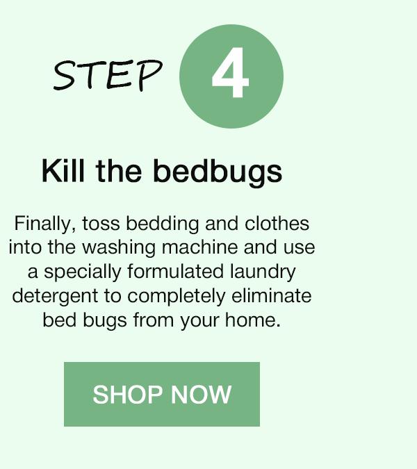 STEP 4. Kill the bedbugs