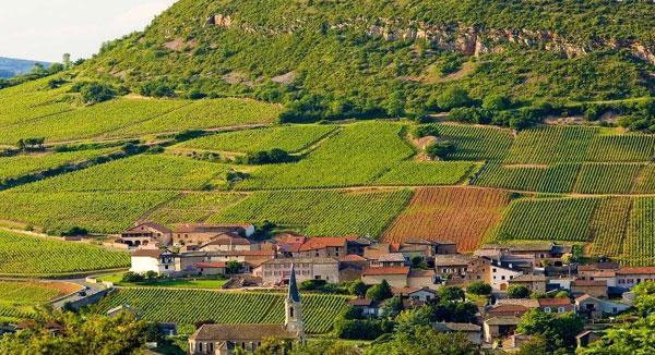 Cremant de Bourgogne by Marie-Pierre Manciat N/V