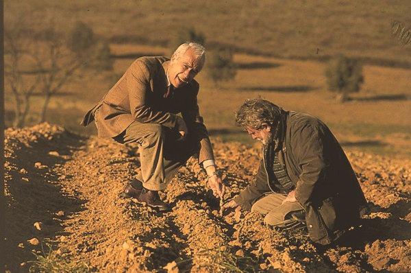 Photo of Erik Banti, producer of Spineto Maremma Toscana DOC 2018 in the vineyard.