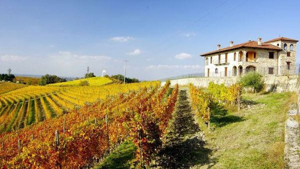 Chateau and vineyard of Cantine Manfredi, the producer of Barolo DOCG by Patrizi 2017 .