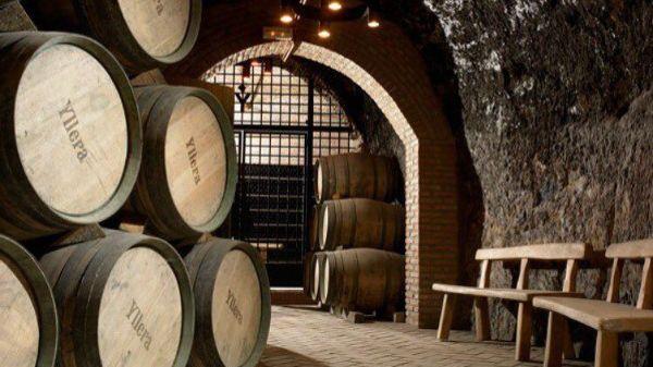 Cellar of Bodega Yllera, producer of Pepe Yllera Ribera Del Duero 2018.