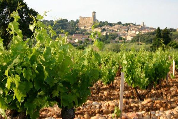 View of vineyard and chateau of Domaine de Marcoux, producer of Châteauneuf-du-Pape 2018