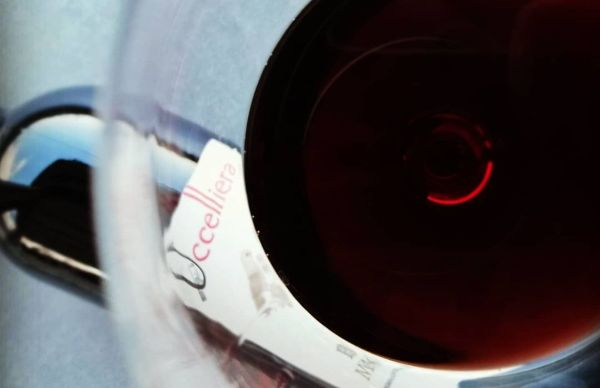 Glass of Uccelliera's Brunello Di Montalcino Riserva DOCG 2015, half full and photographed from above.