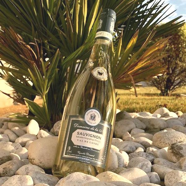 Bottle of Sauvignon Blanc Val de Loire by Vignoble Drouard 2020 sitting at an angle in a bed of stones in front of a plant.