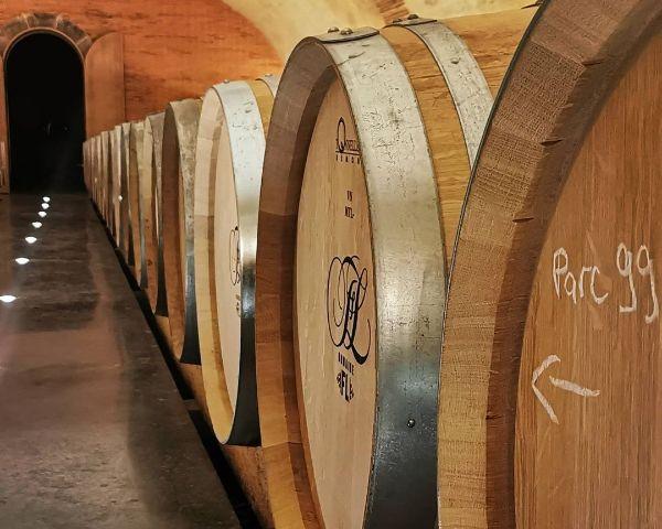Domaine Fl  Cave showing oak barrels  of Savennieres Chamboureau 2018 lying on their side.