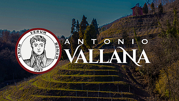 View of Antonio Vallana wineyard, producer of Vallana Campi Raudii Lot 2010