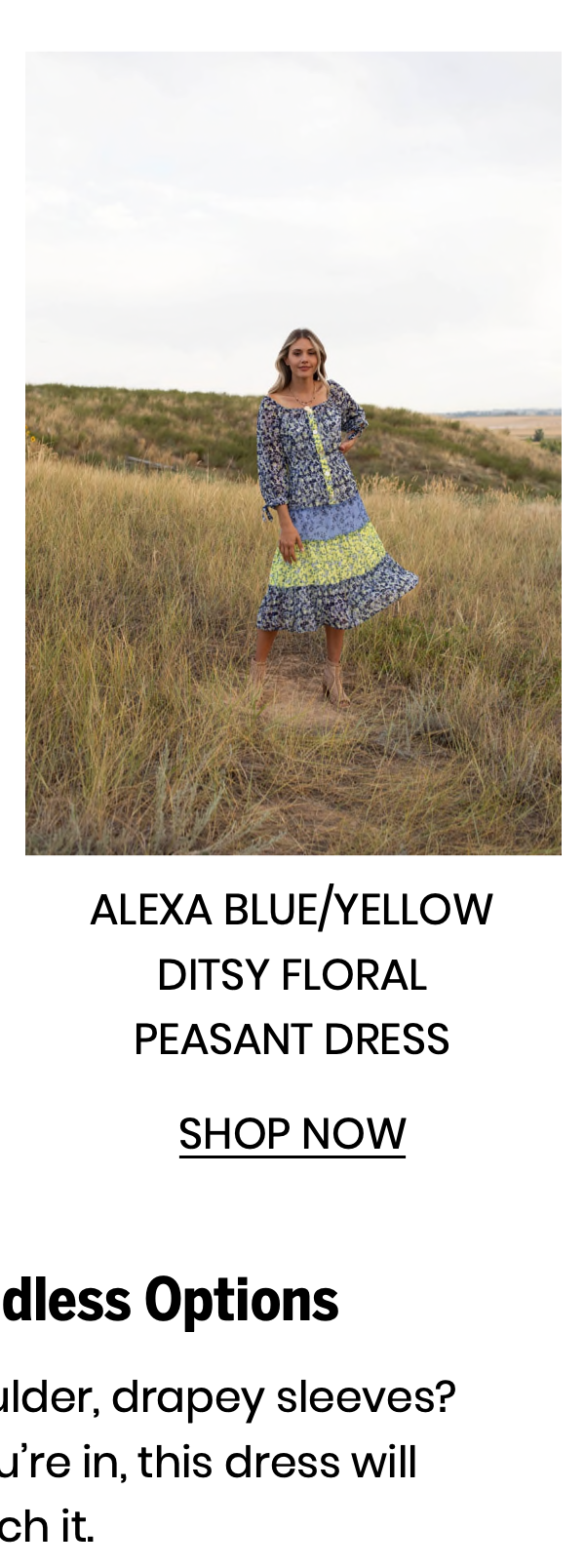 """Shop the """"Alexa Blue/Yellow Ditsy Floral Peasant Dress"""""""