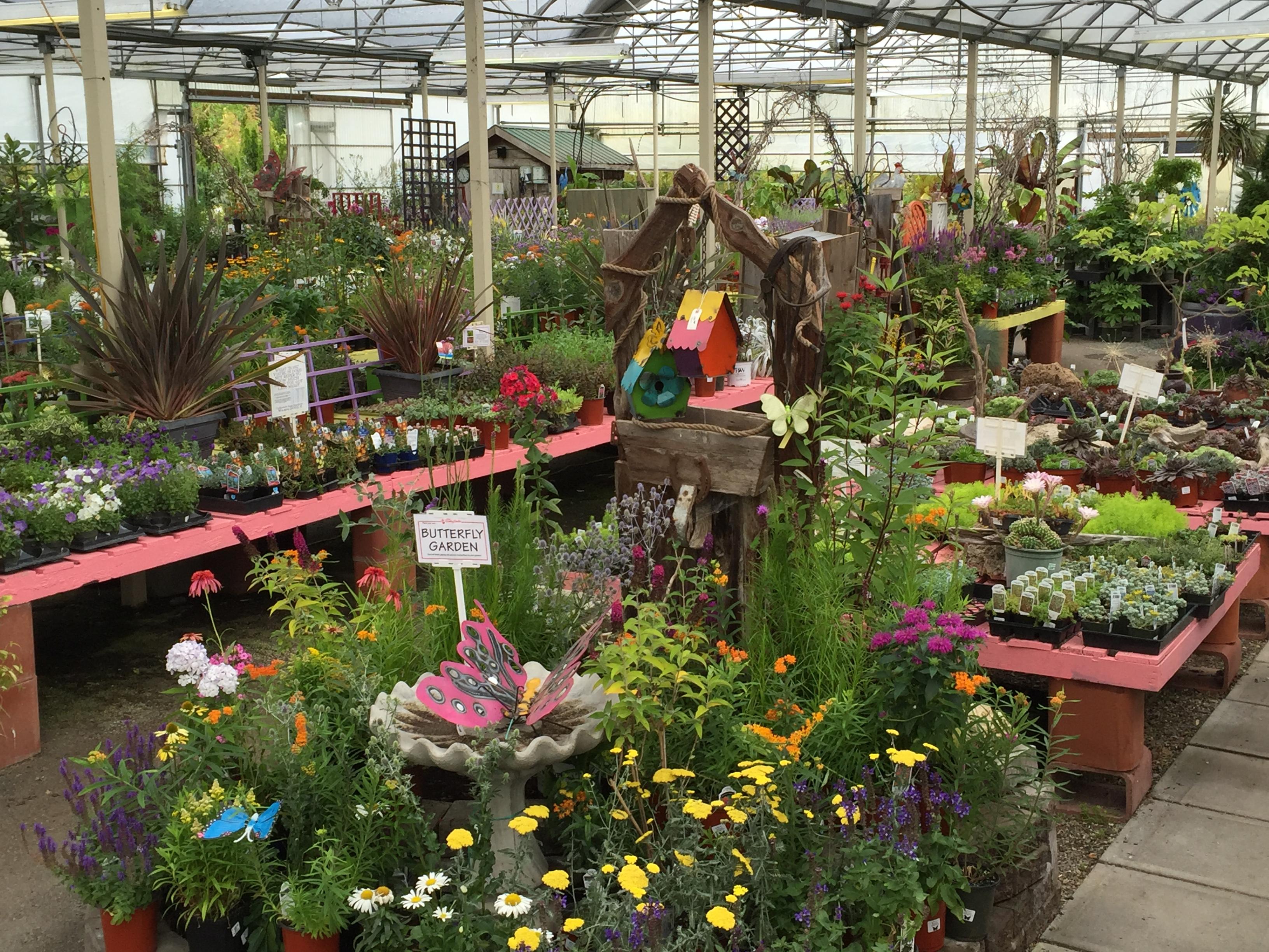 Meet our retail partner: Minter Garden