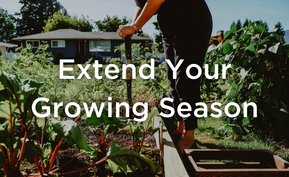 West Coast Seeds Extend Your Growing Season Banner, Backyard Garden, shoveling in dirt.