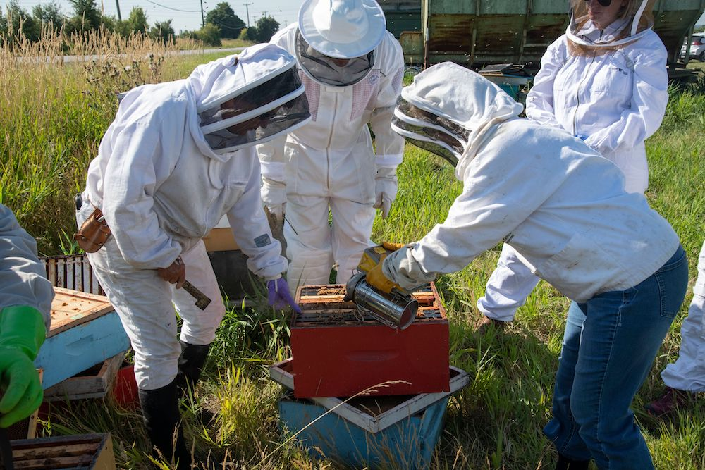 Beekeeping Fundamentals Course