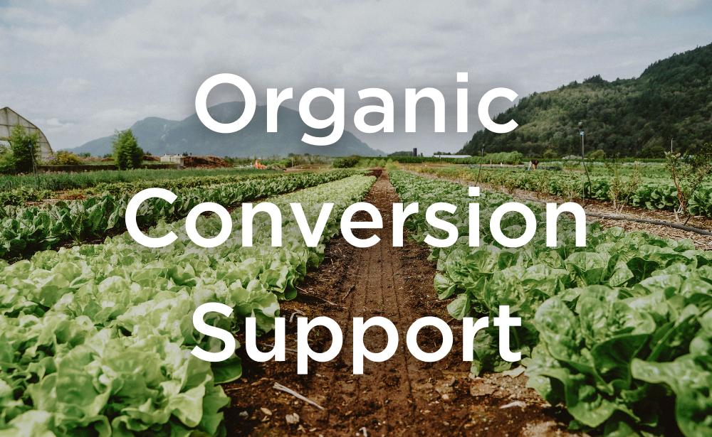 Organic Farm Conversion Support from COTA