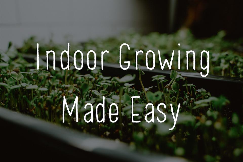 Grow indoors with West Coast Seeds