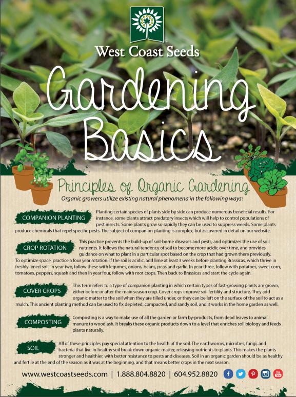 Garden Basics Guide