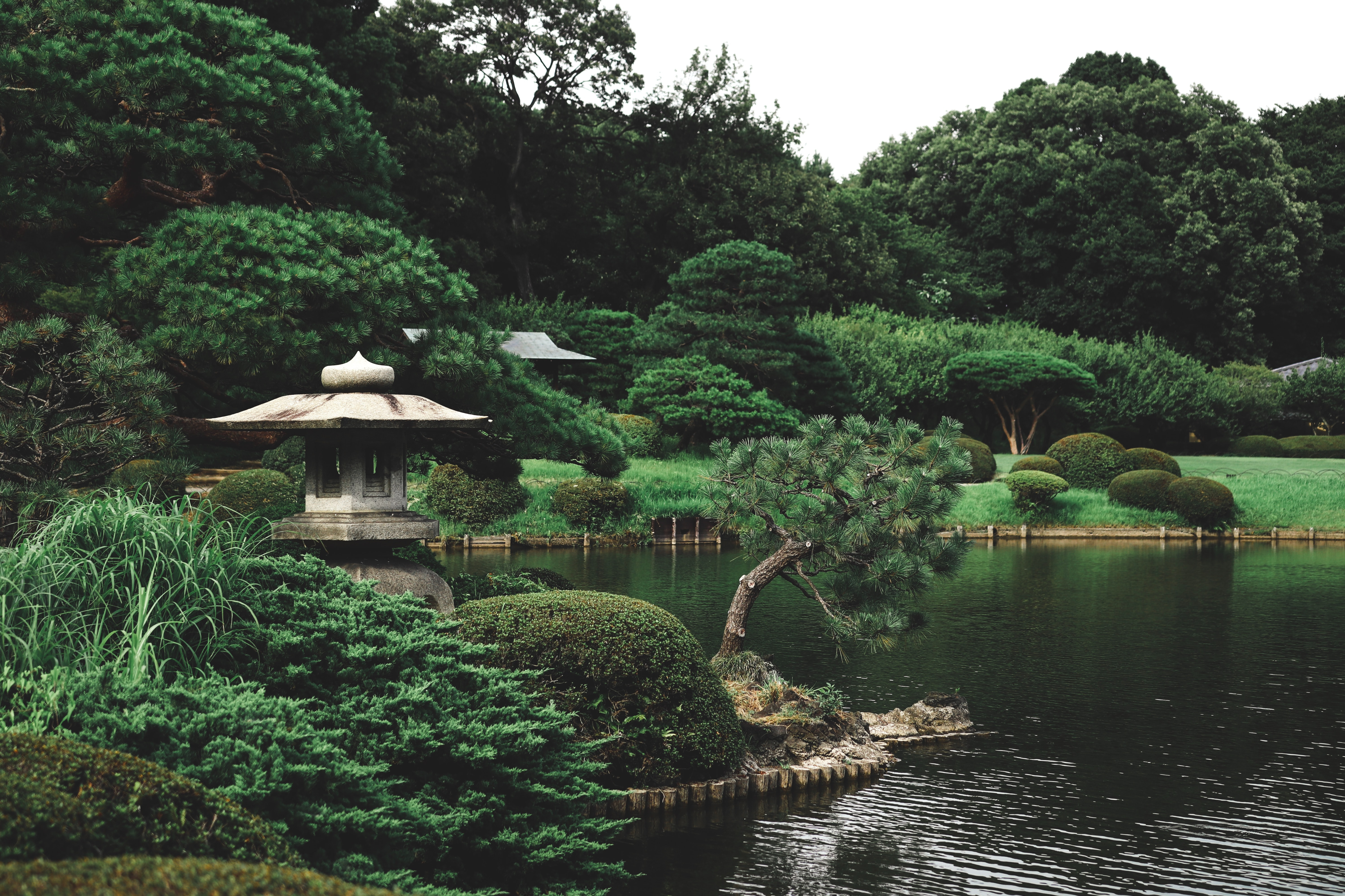 Join me in Japan! May 20-26, 2022