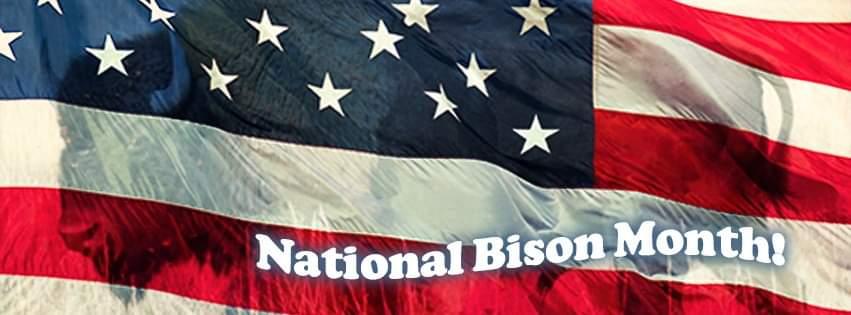 National Bison Month