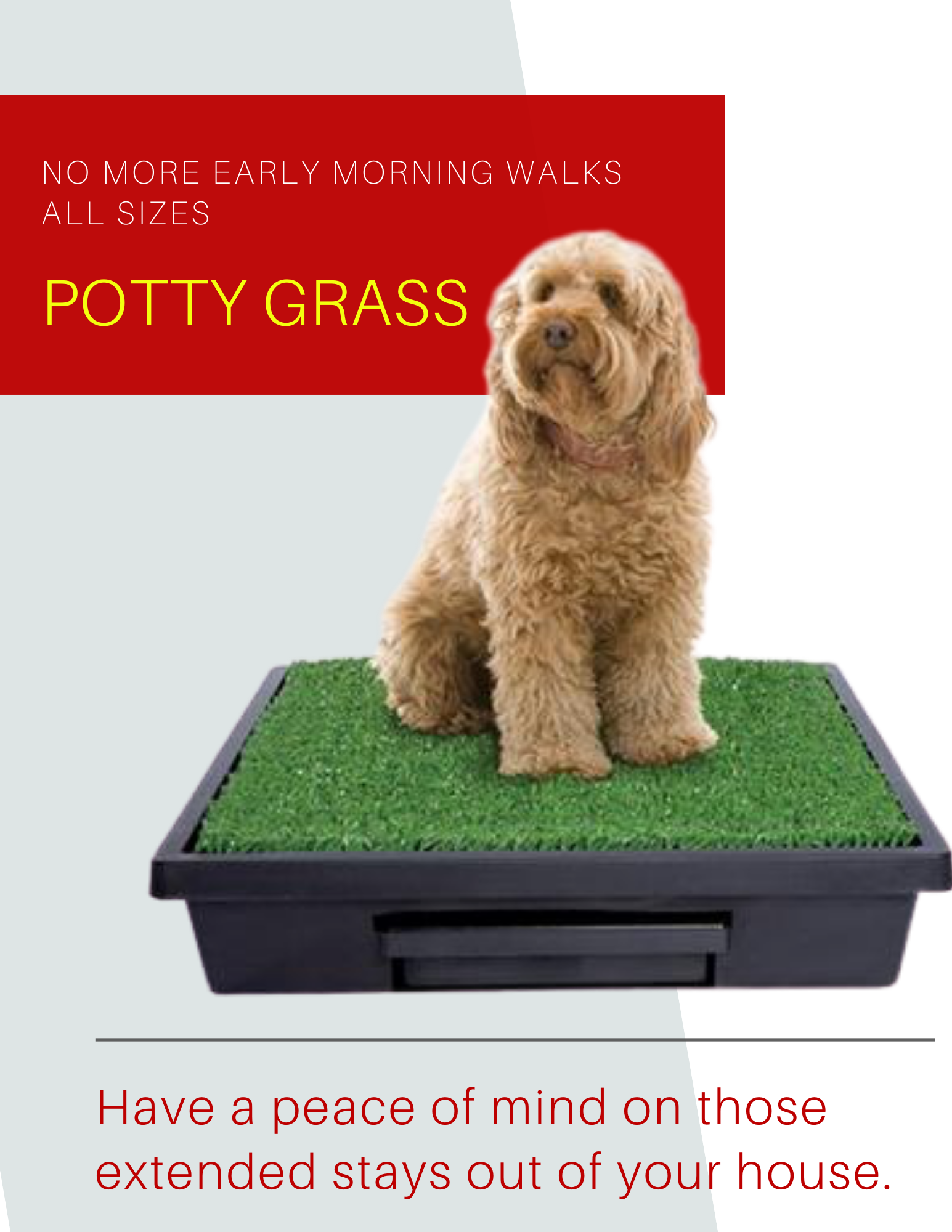 Potty Grass for Dogs
