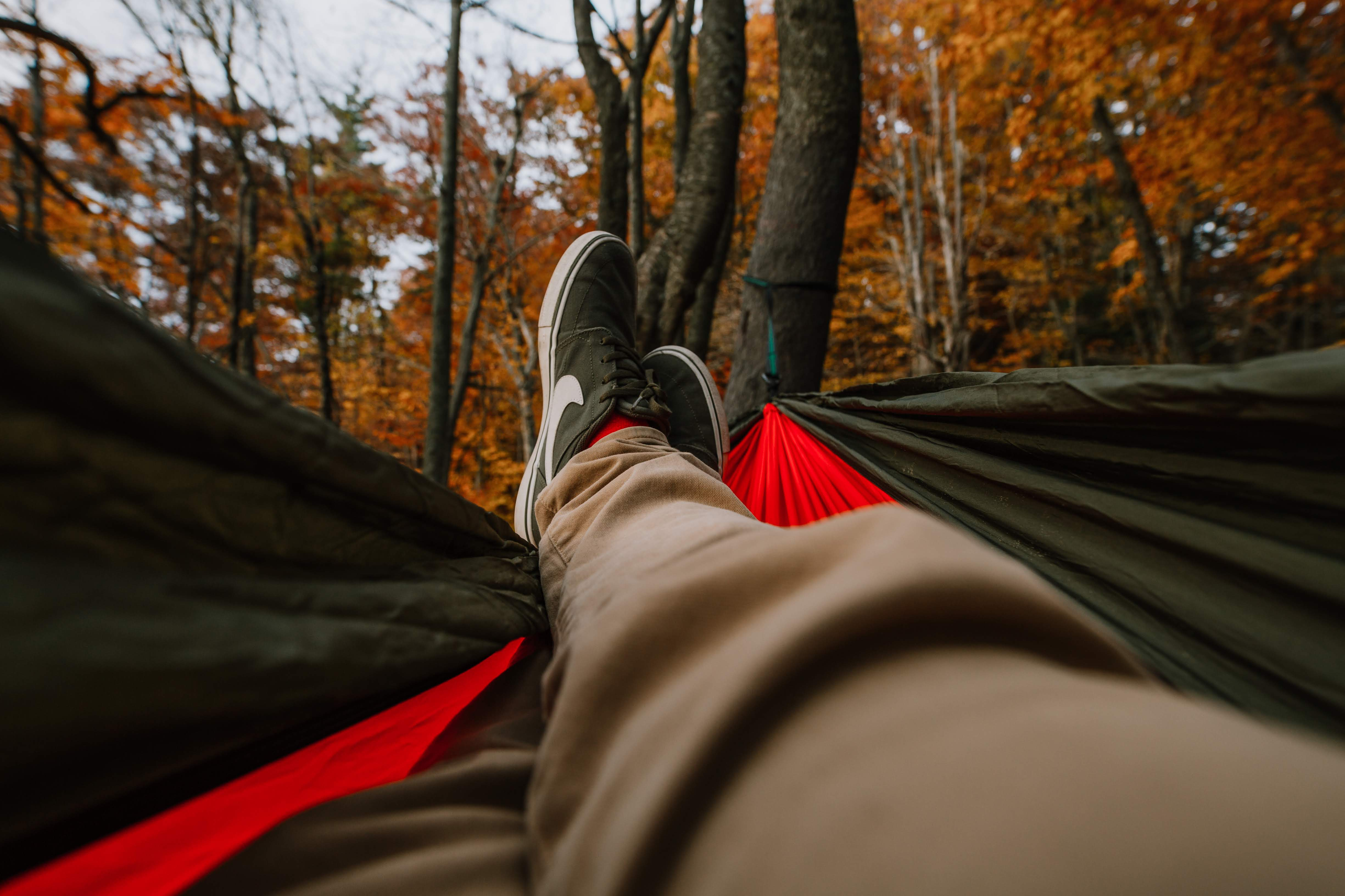 Photo of guy in hammock