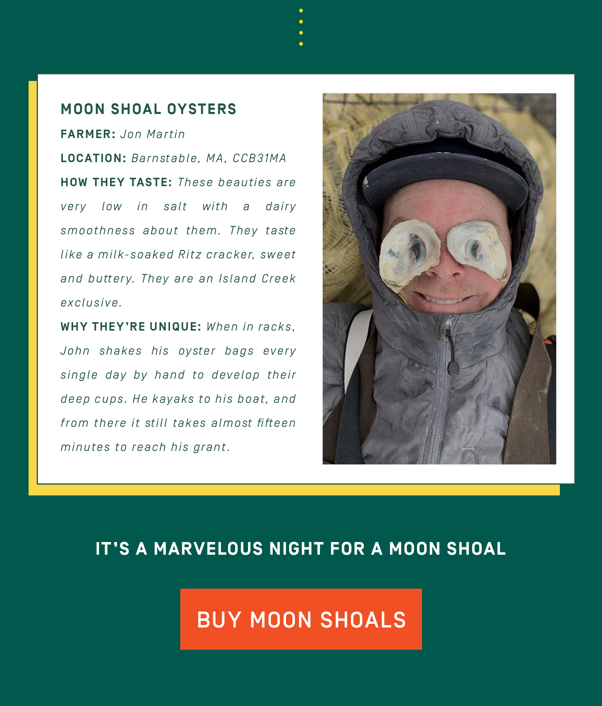 Buy Moon Shoals