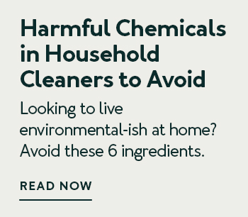 Harmful Chemicals In Household Cleaners To Avoid (And What To Use Instead)