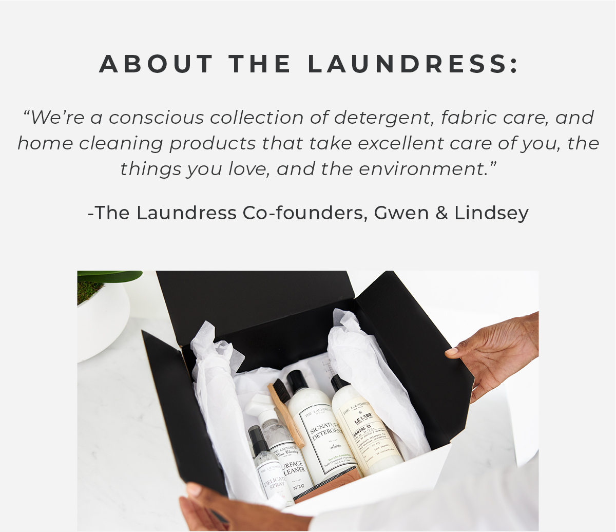 About The Laundress