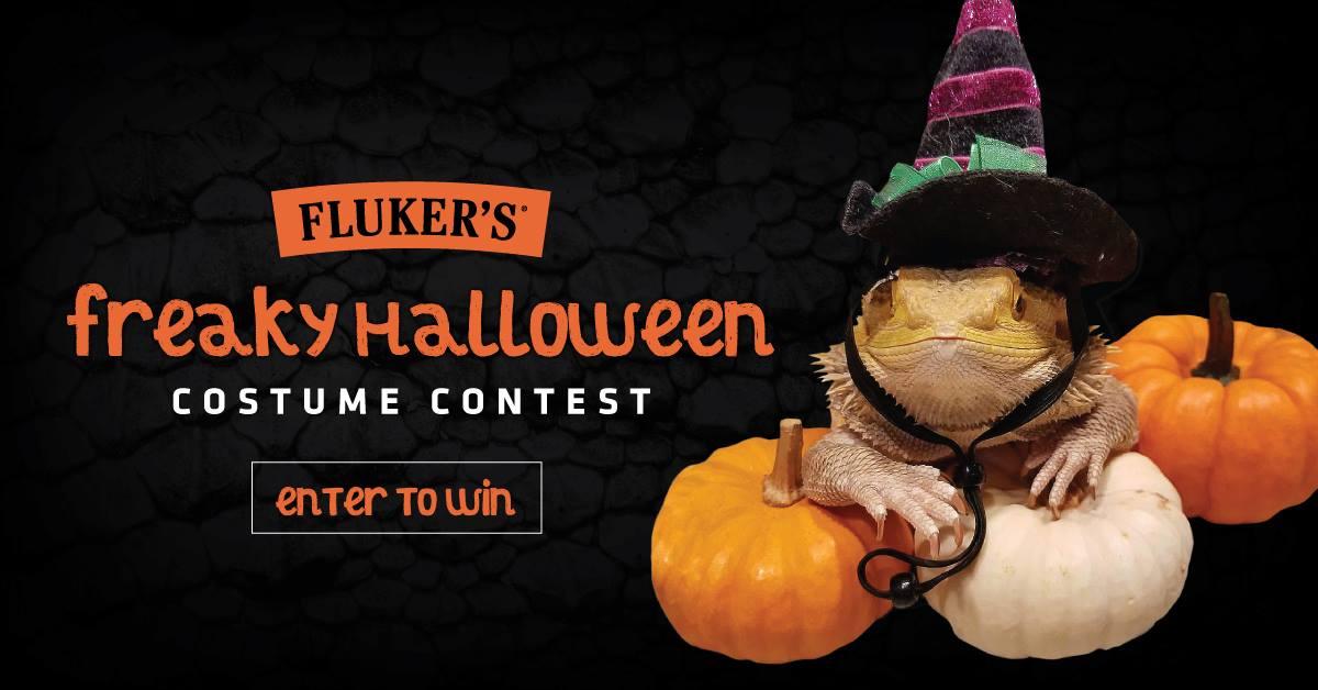 flukers-freaky-halloween-contest