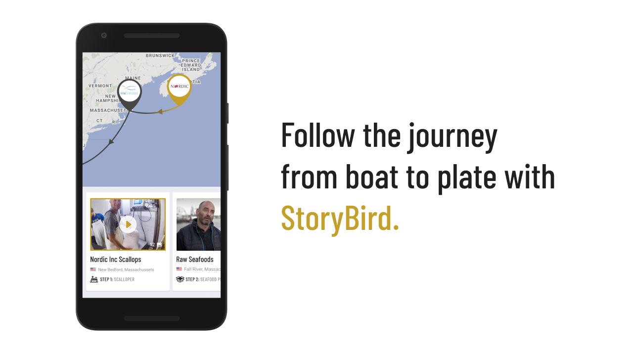 Scallop StoryBird