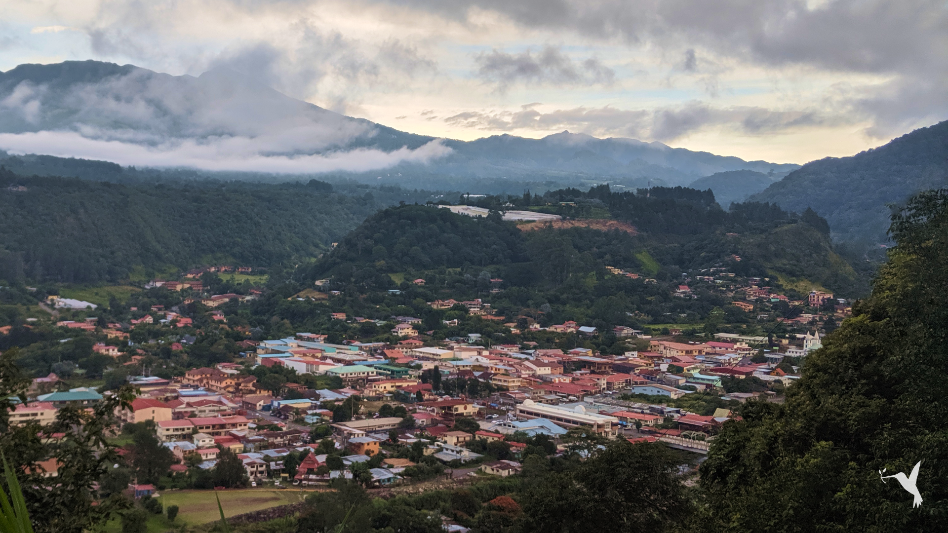 What Boquete Can Teach the World about Coffee