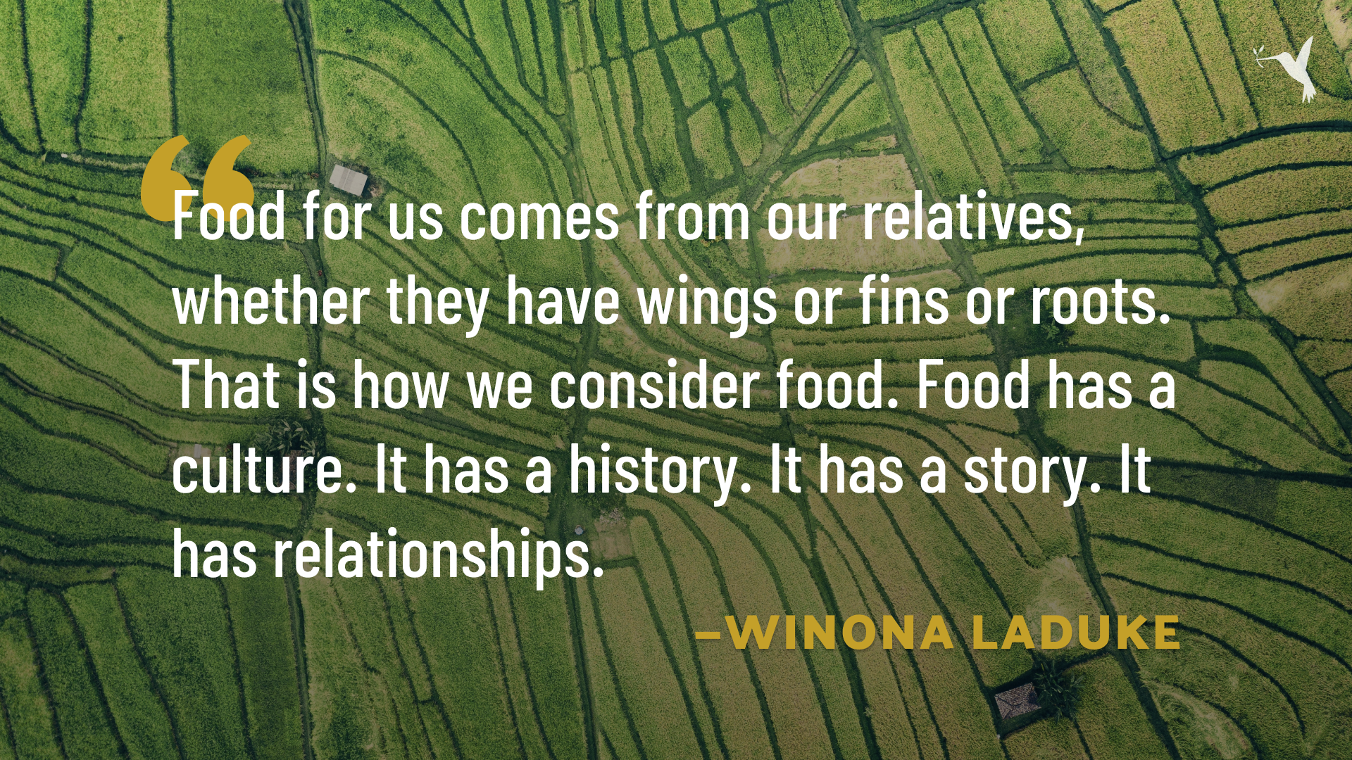 Winona LaDuke quote