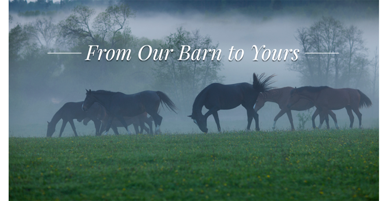 From Our Barn To Yours