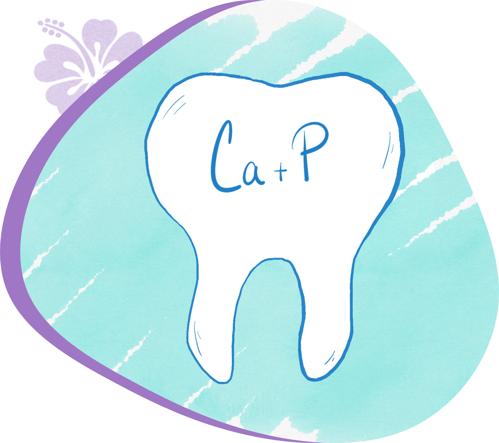 Tooth with Ca + P