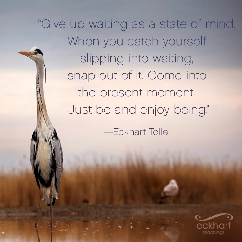 """Give up waiting as a state of mind. When you catch yourself slipping into waiting, snap out of it. Come into the present moment. Just be and enjoy being."" —Eckhart Tolle"