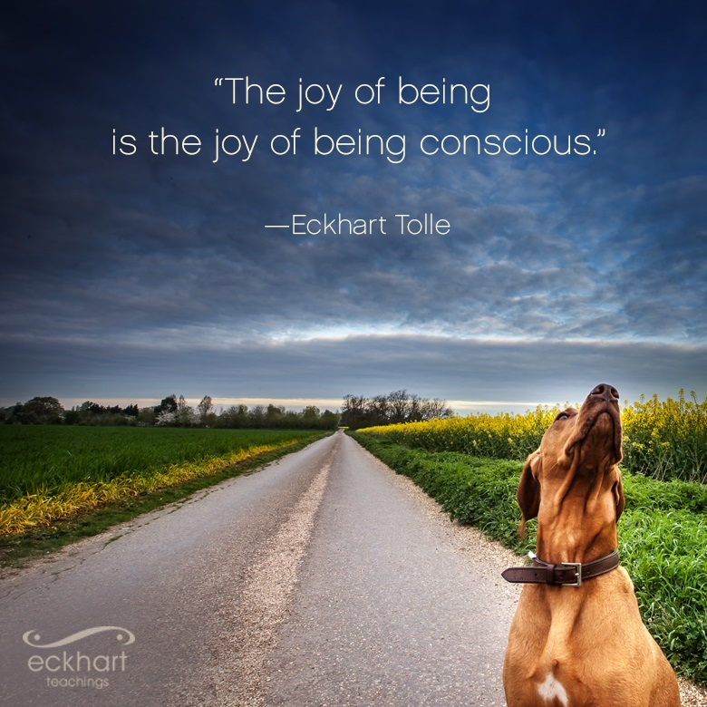 """The joy of being is the joy of being conscious."""