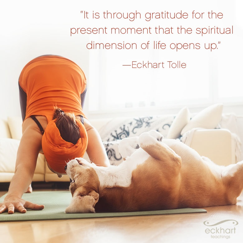 """""""It is through gratitude for the present moment that the spiritual dimension of life opens up."""""""