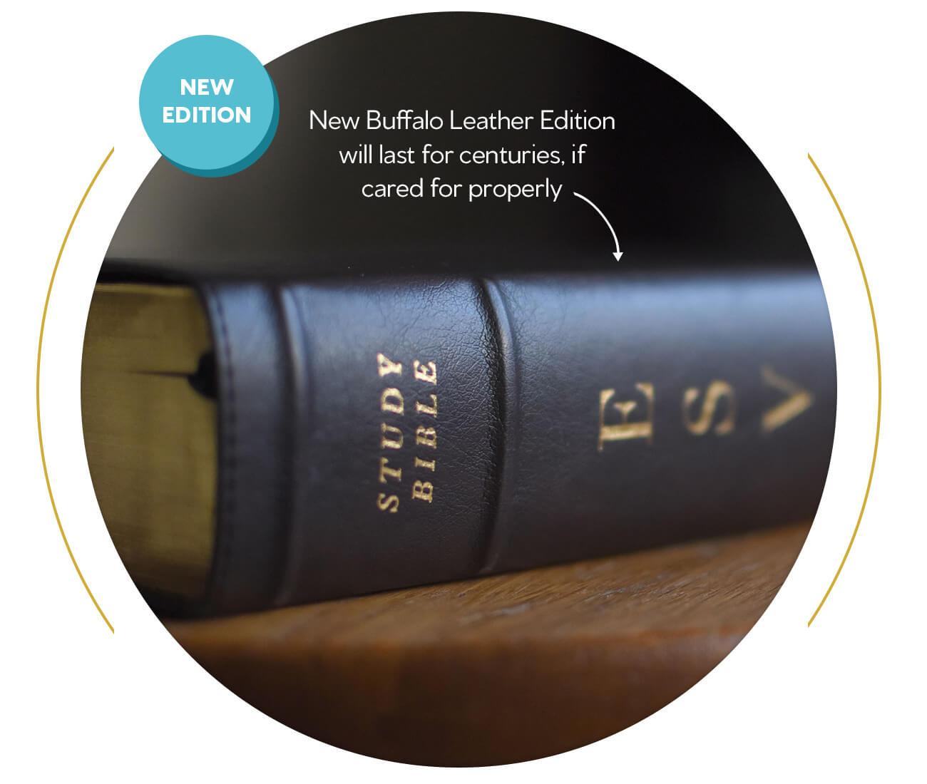 ESV Study Bible (Buffalo Leather, Deep Brown)