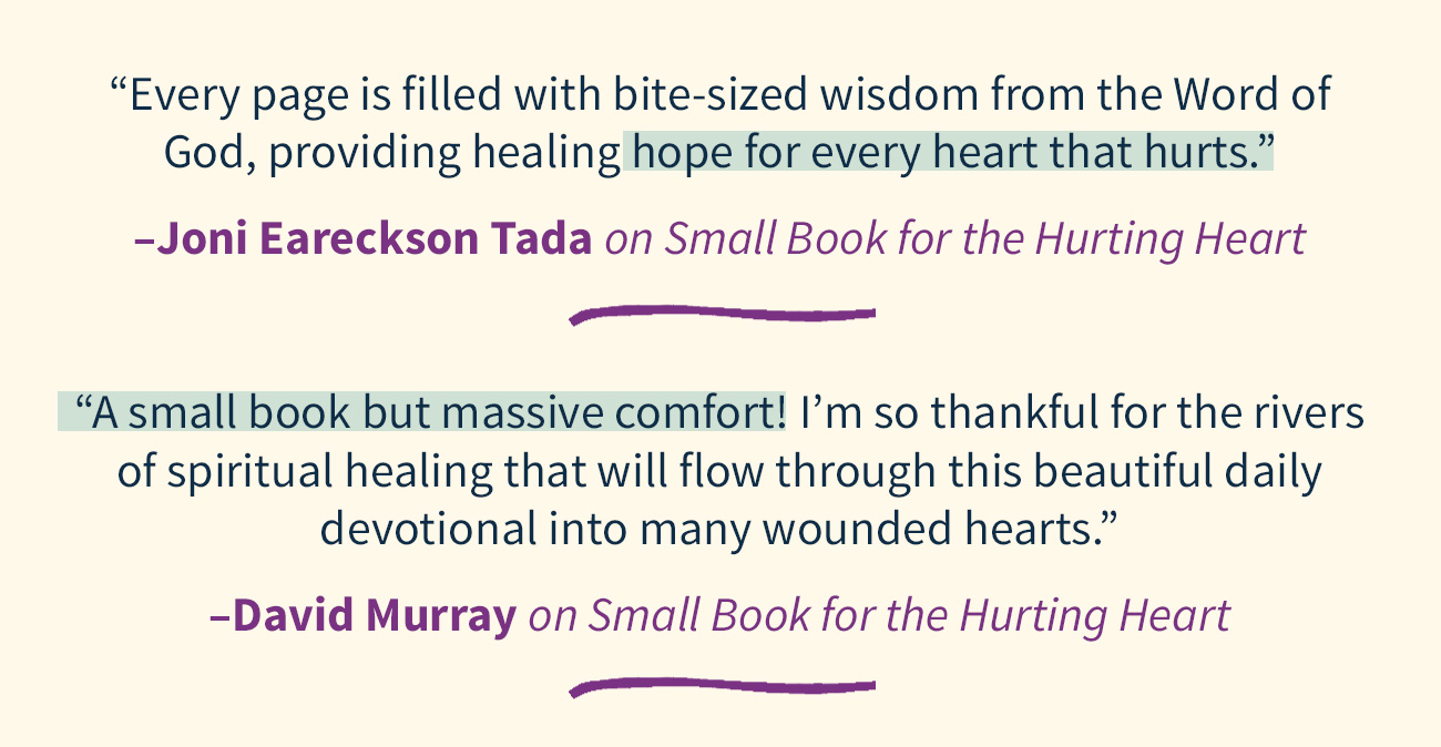 Small Book for the Hurting Heart