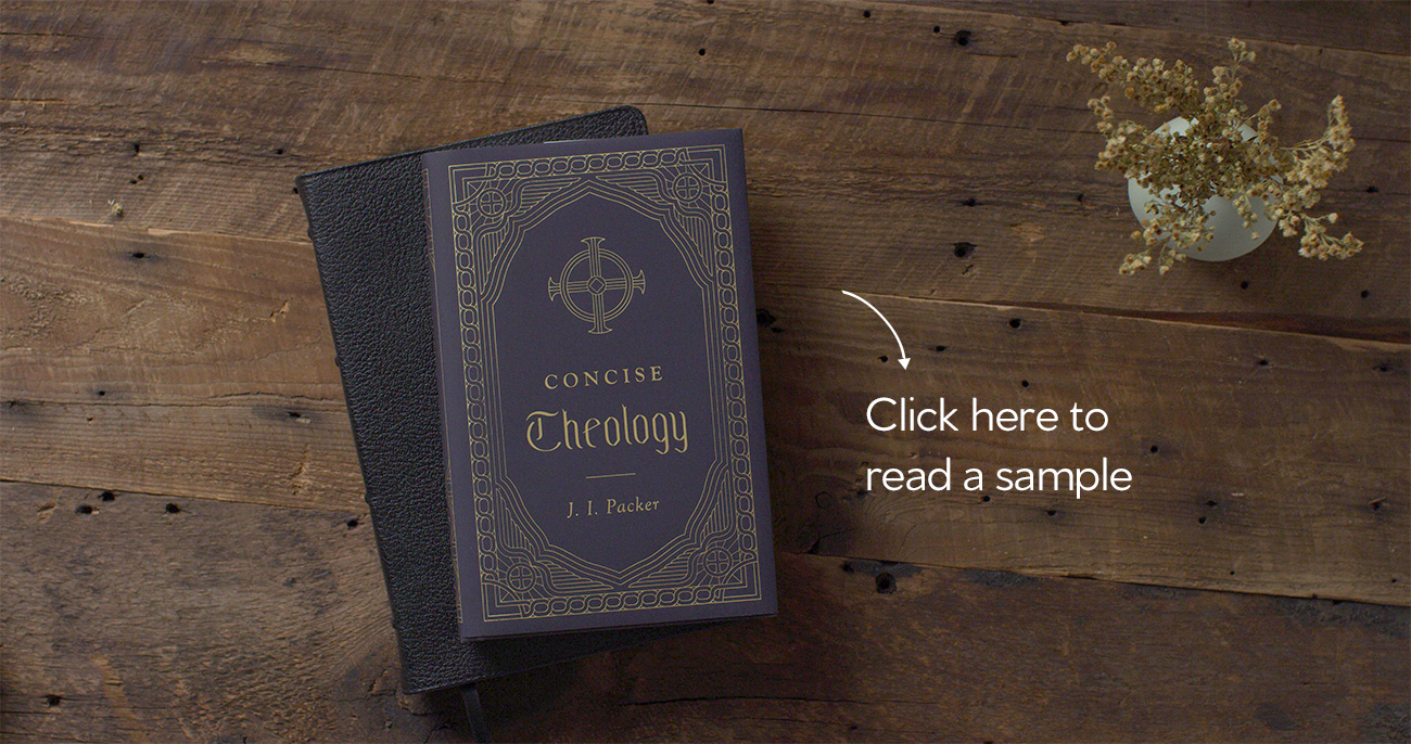 Concise Theology Sample