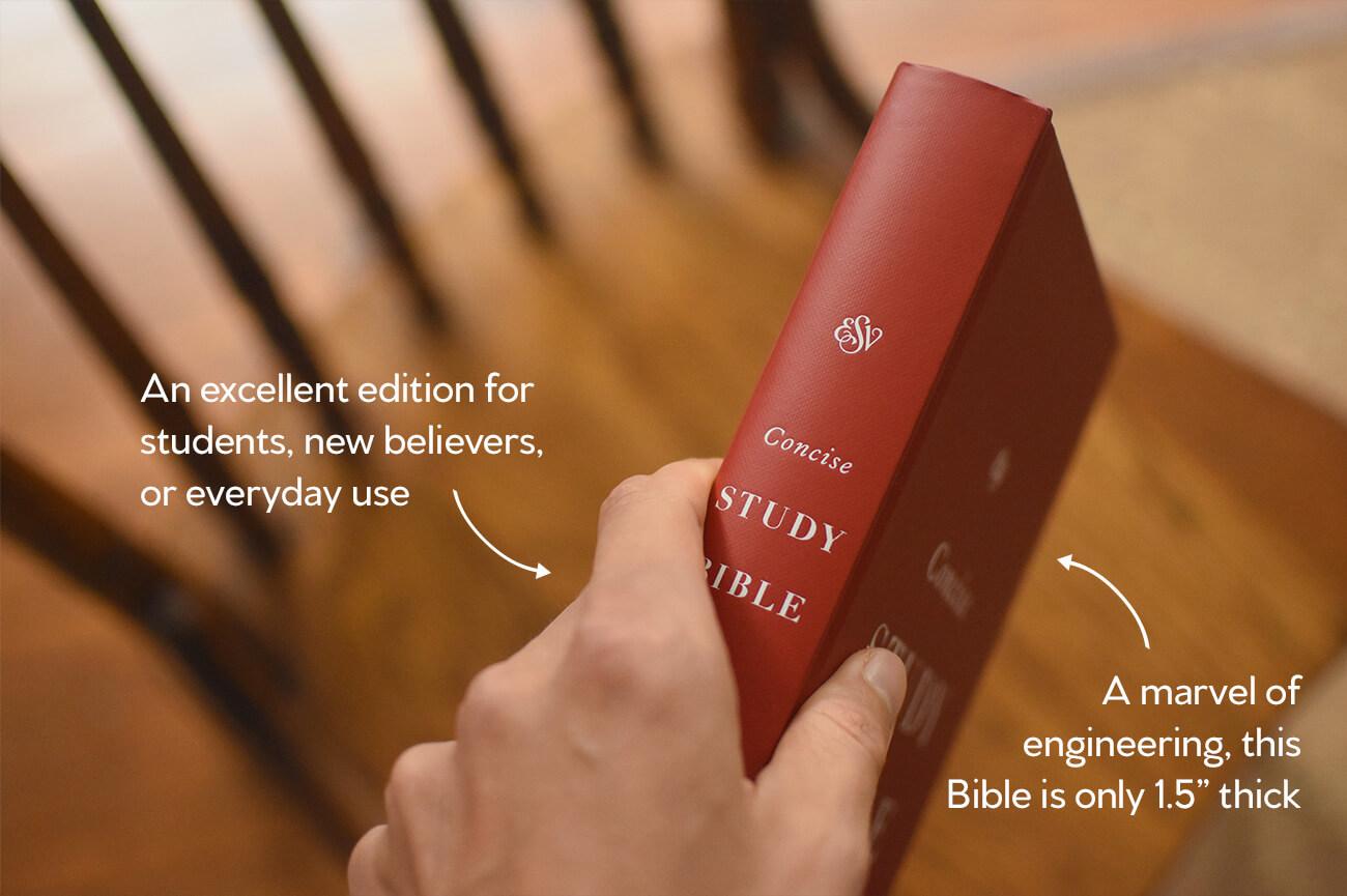 ESV Concise Study Bible