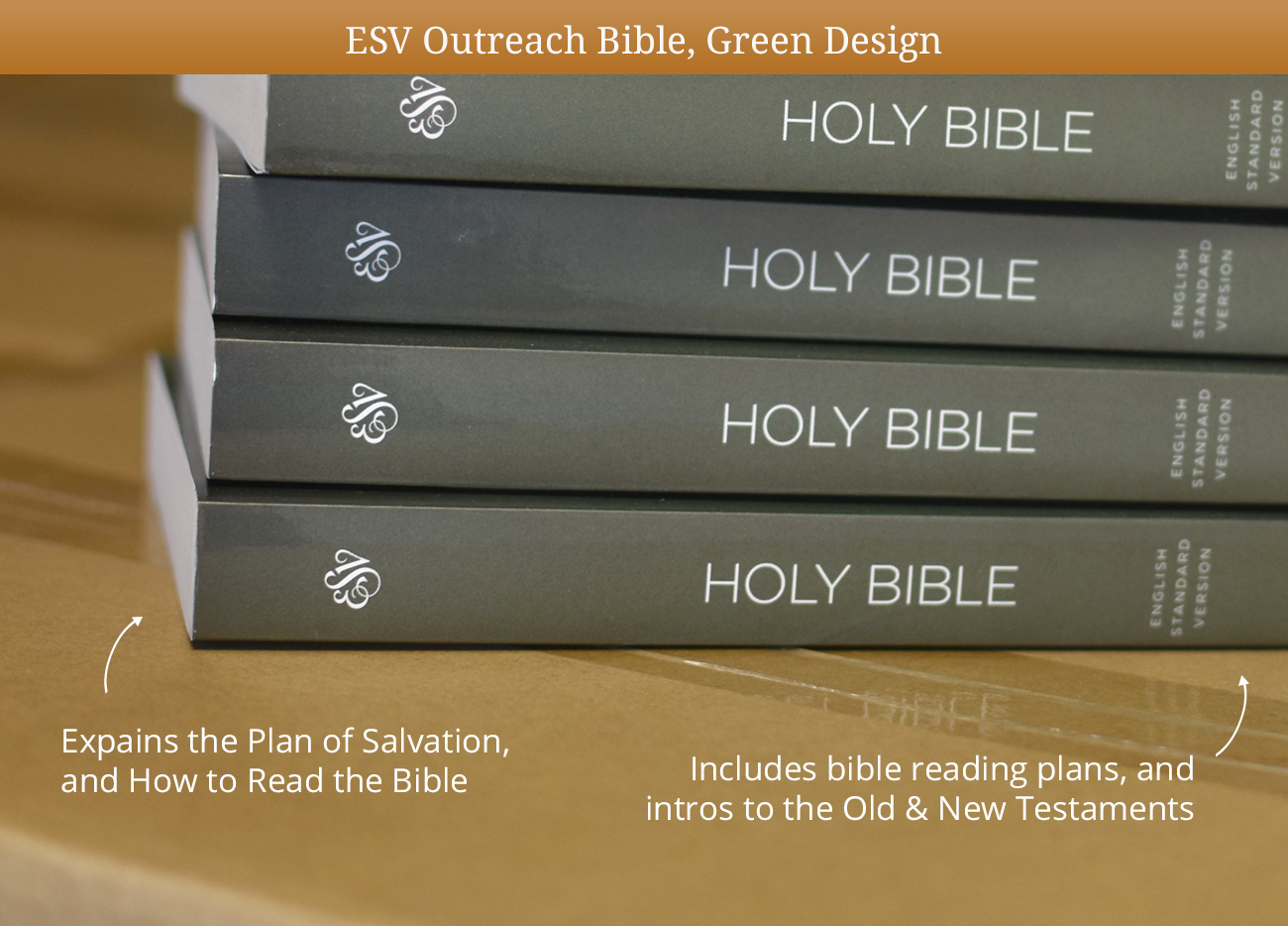 ESV Holiday Outreach