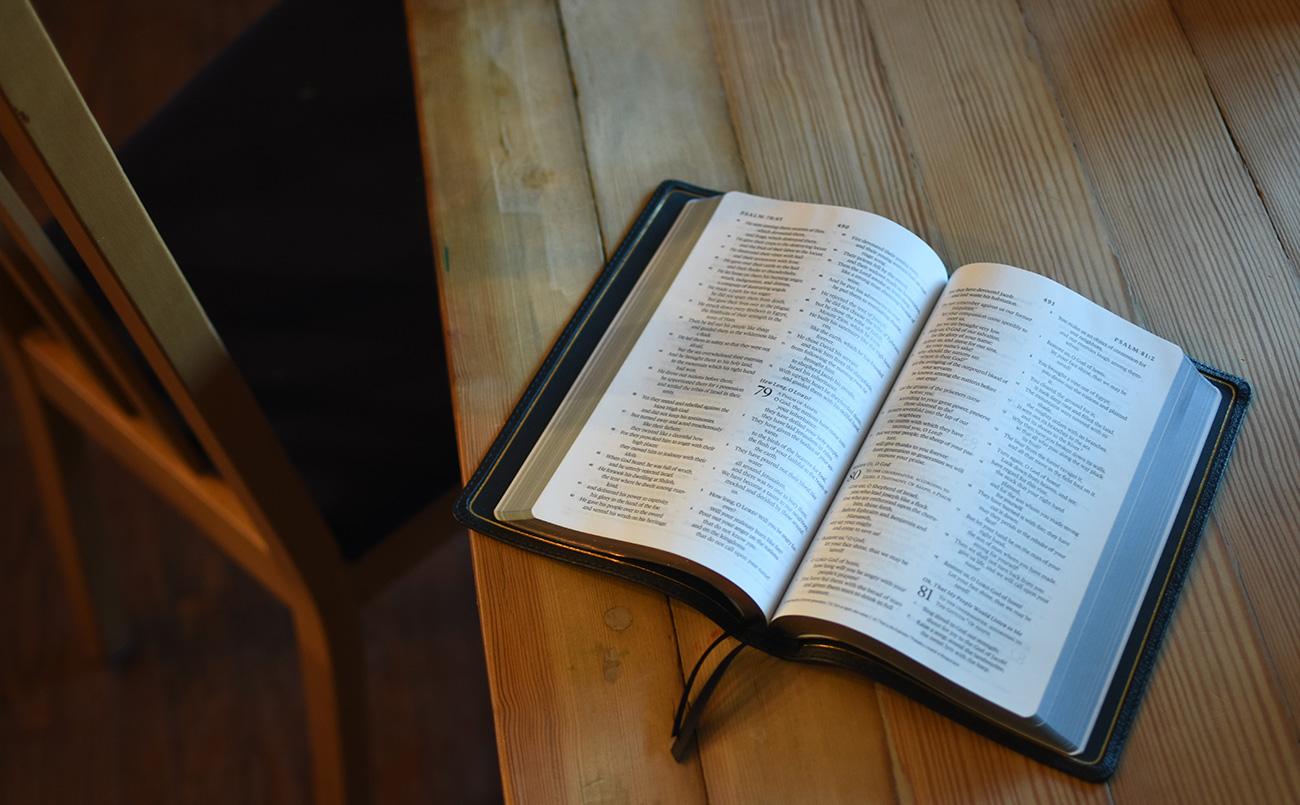 ESV Thinline Bibles