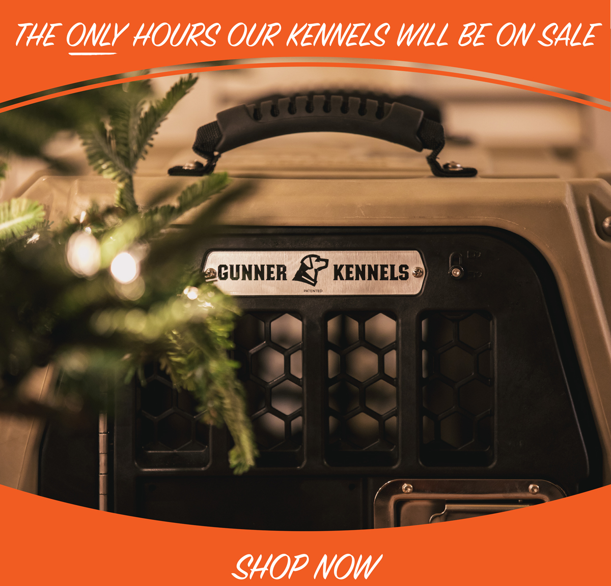 TIME IS TICKING ON OUR ONLY KENNEL SALE OF THE YEAR.