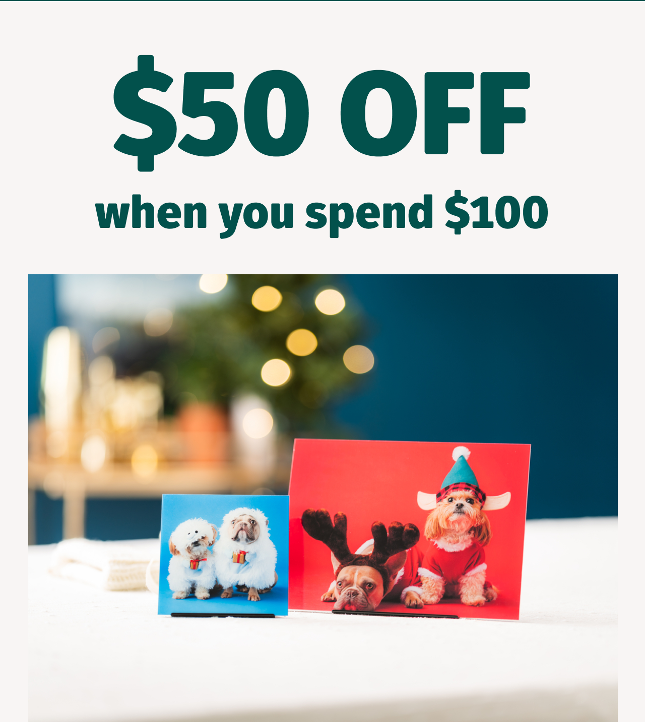 $50 Off when you Spend $100