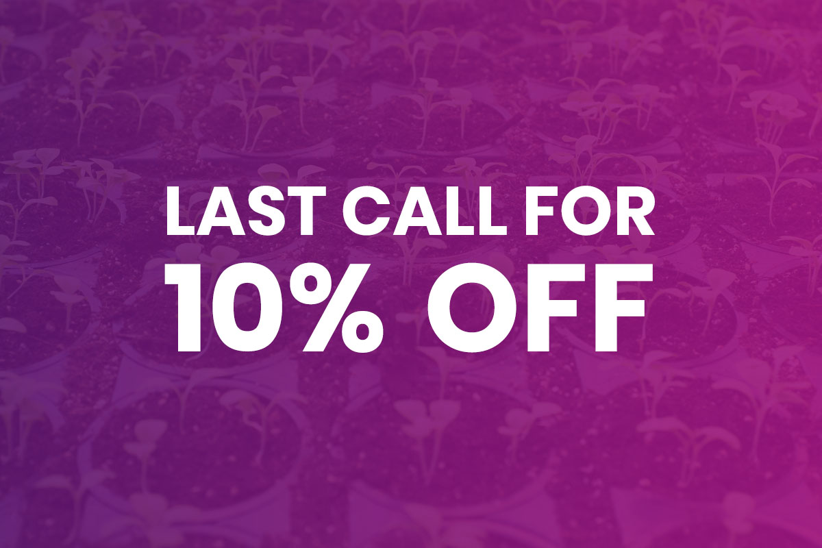 Last Call for 10% OFF