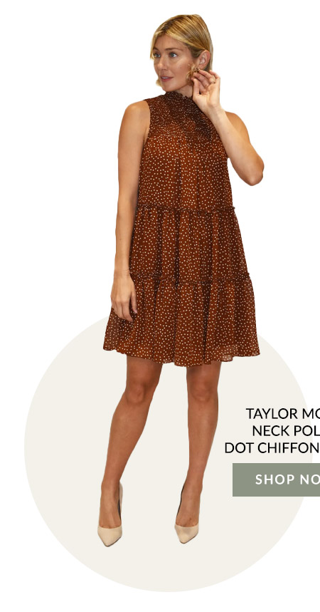 Taylor Mock Neck Polka Dot Chiffon Dress