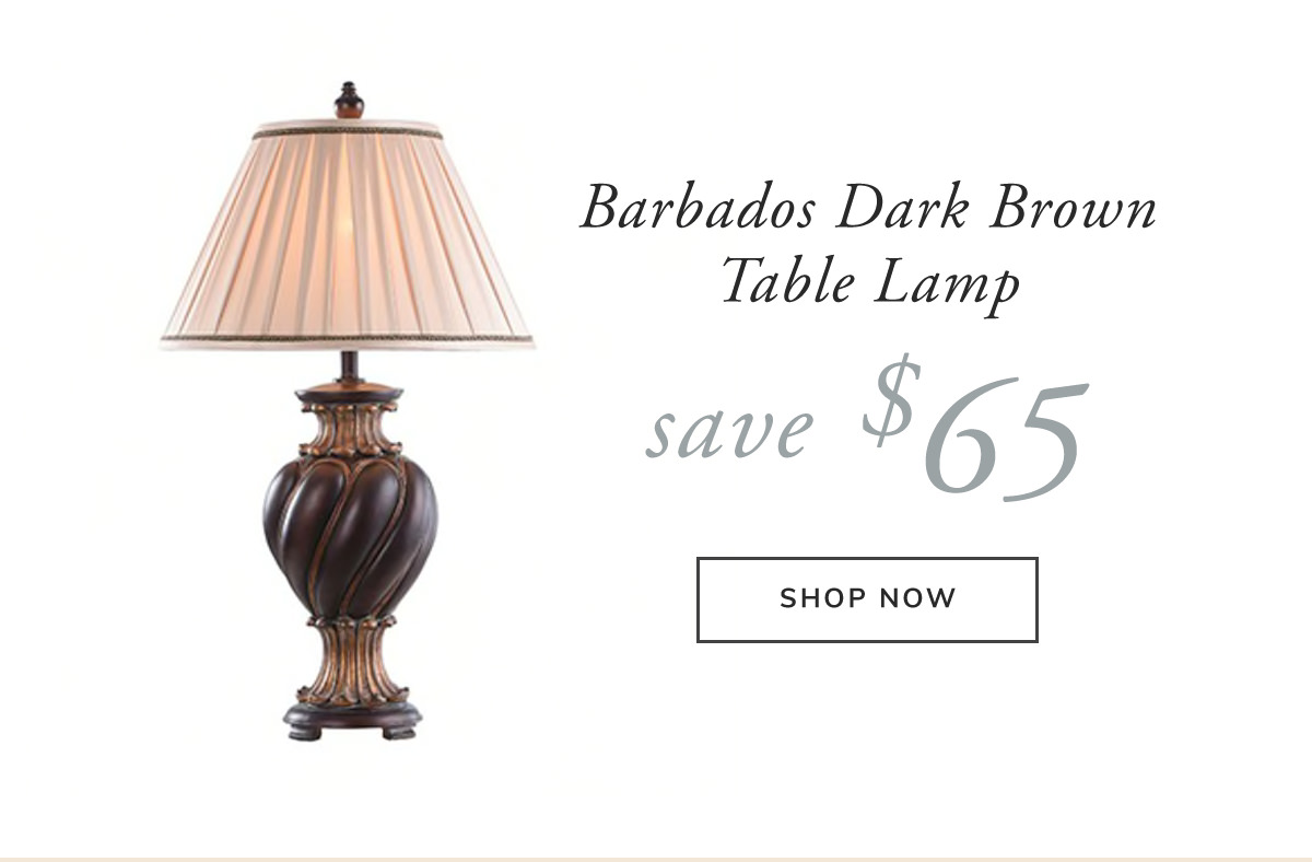 Barbados Dark Brown With Khasi Silver Finish Table Lamp. Save $65 | SHOP NOW