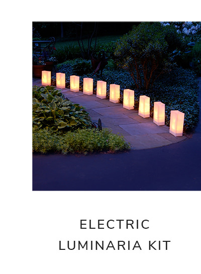 Electric Printed with LumaBases Set of 10 Luminaria Kits | SHOP NOW